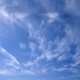 空の写真素材 [FYI04665289]