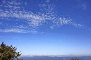 秋空 うろこ雲の写真素材 [FYI04665302]