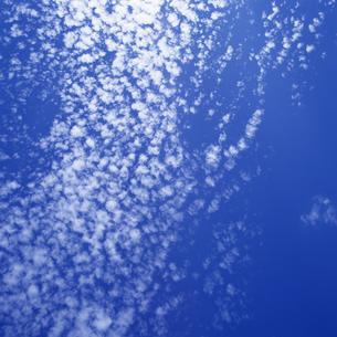 秋空 うろこ雲の写真素材 [FYI04665320]