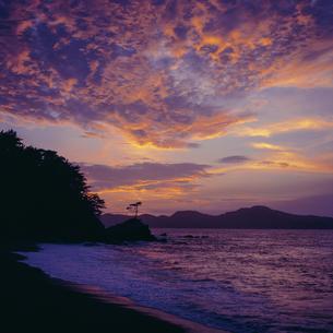 幻想的な夕景の写真素材 [FYI04665354]