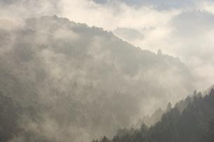 吉野山-朝ガスの写真素材 [FYI04665441]