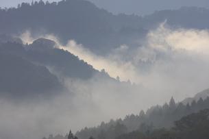 吉野山-朝ガスの写真素材 [FYI04665446]