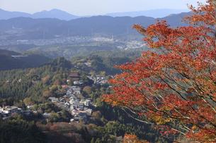 吉野山-上千本-紅葉-11月の写真素材 [FYI04665469]