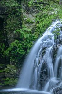 赤目四十八滝、滝 、千手滝の写真素材 [FYI04665484]