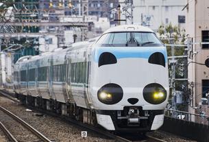 JR287系 パンダくろしおの写真素材 [FYI04665709]