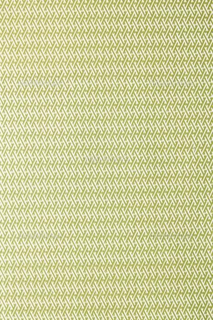 和紙-日本の伝統柄-華やか-背景素材-彩綾型の写真素材 [FYI04665997]