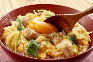 親子丼 (chicken and egg bowl)の写真素材 [FYI04666051]
