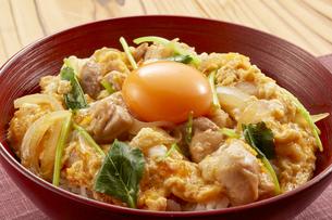 親子丼 (chicken and egg bowl)の写真素材 [FYI04666082]