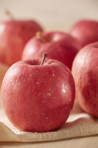 麻布にノーブランドのリンゴの写真素材 [FYI04666126]