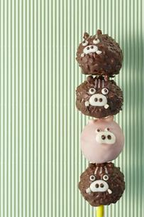 チョコレート 亥 いのしし (Boar type chocolate)の写真素材 [FYI04666158]