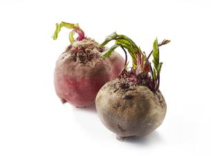 ビーツとビーツ キオッジャ (beet and beet chioggia)の写真素材 [FYI04666266]