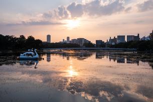 大濠公園夕景の写真素材 [FYI04666483]