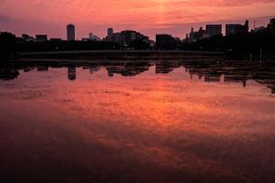 大濠公園の印象的な夕景の写真素材 [FYI04666495]