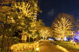 イルミネーションの東京ミッドタウン 東京夜景の写真素材 [FYI04667054]