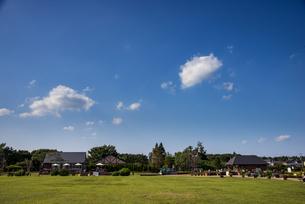 秋のアンデルセン公園 芝生と青空の写真素材 [FYI04667380]