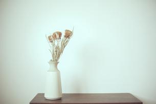 花器に生けられたバンクシャーのドライフラワーの写真素材 [FYI04667664]