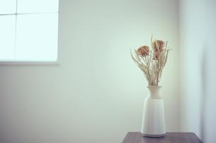 花器に生けられたバンクシャーのドライフラワーの写真素材 [FYI04667665]