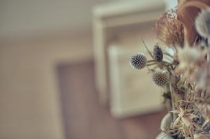 棚に飾られたドライフラワーの写真素材 [FYI04667673]