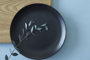 四角の木のトレイと黒い丸の皿に添えたユーカリの写真素材 [FYI04667823]