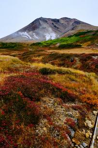 旭岳の紅葉の写真素材 [FYI04667860]