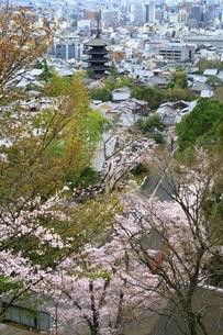 桜と八坂の塔 京都市街眺望の写真素材 [FYI04668188]