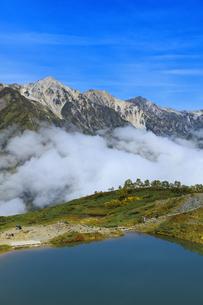 秋の八方池と白馬三山と雲海の写真素材 [FYI04668292]