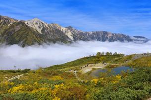 紅葉の八方池と白馬三山と雲海の写真素材 [FYI04668294]