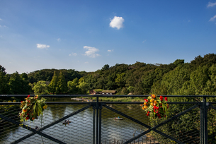秋のアンデルセン公園 の写真素材 [FYI04668367]