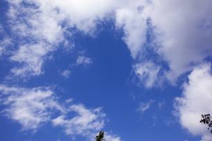 青空と雲の写真素材 [FYI04668516]