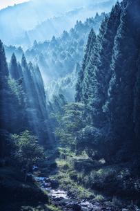 朝の渓谷の写真素材 [FYI04668531]