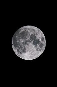 中秋の名月 2020の写真素材 [FYI04668878]
