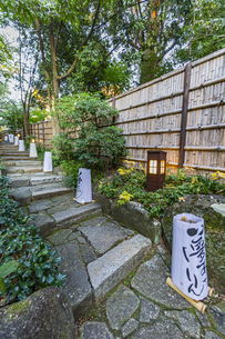 徳川園内の石段と灯籠の写真素材 [FYI04668930]