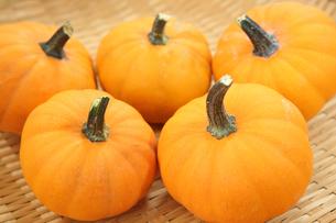 オレンジ色のかぼちゃの写真素材 [FYI04669104]