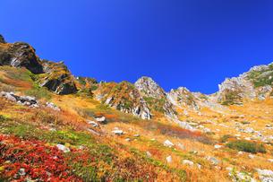 秋の中央アルプス千畳敷カールの写真素材 [FYI04669232]
