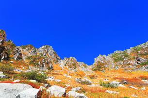 秋の中央アルプス千畳敷カールの写真素材 [FYI04669235]
