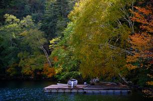 然別湖の紅葉の写真素材 [FYI04669286]