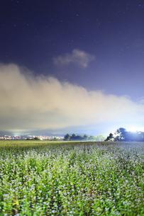 東山観光農園の蕎麦畑のライトアップの写真素材 [FYI04669294]