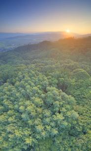 パノラマ展望台付近から望む塩田平と樹林と浅間山から昇る朝日の写真素材 [FYI04669326]