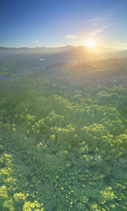 パノラマ展望台付近から望む塩田平と樹林と浅間山から昇る朝日の写真素材 [FYI04669327]