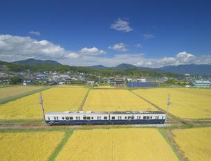 舞田の田園と別所線のまるまどりーむ号の写真素材 [FYI04669336]