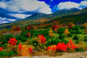 十勝岳の紅葉の写真素材 [FYI04669611]