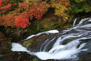 紅葉の竜頭の滝の写真素材 [FYI04669757]