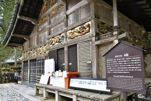 神厩舎 猿の彫刻01の写真素材 [FYI04669861]