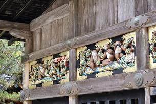 神厩舎 猿の彫刻03の写真素材 [FYI04669863]