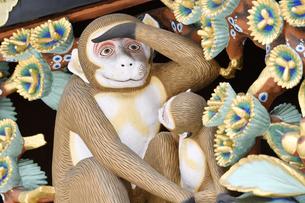 神厩舎 猿の彫刻06の写真素材 [FYI04669866]