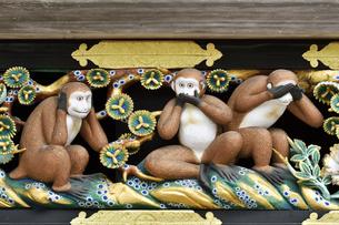 神厩舎 猿の彫刻09の写真素材 [FYI04669869]