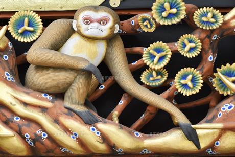 神厩舎 猿の彫刻22の写真素材 [FYI04669882]