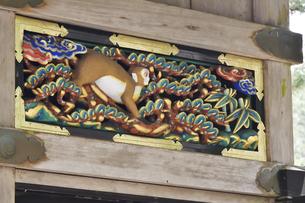 神厩舎 猿の彫刻28の写真素材 [FYI04669888]