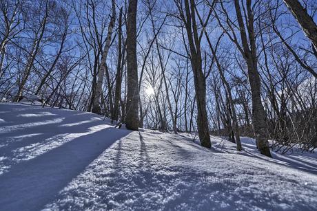 乗鞍高原雪景色の写真素材 [FYI04670094]