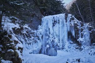 善五郎の滝 凍結の滝の写真素材 [FYI04670095]